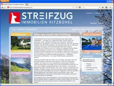 Immobilien Streifzug Magazine-Websites