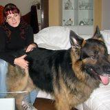 Sandra mit Schäferhund Pete