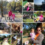 Ausflug in den Linzer Zoo bei Kaiserwetter